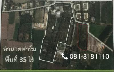 บ้านพร้อมที่ดิน 600000 นครปฐม กำแพงแสน วังน้ำเขียว